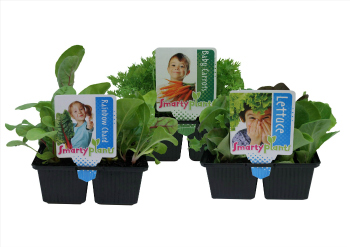 Smarty Plants_Group (2)_web