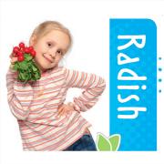 Radish | Smarty Plants - Plants for Kids
