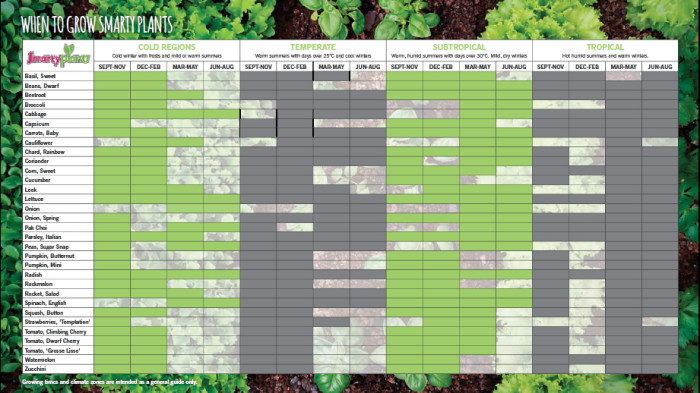 Smarty Plants_Seasonal Information